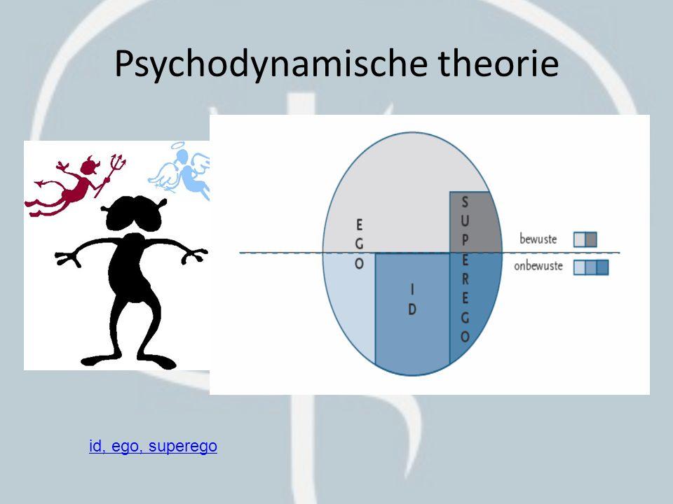 Psychodynamische theorie
