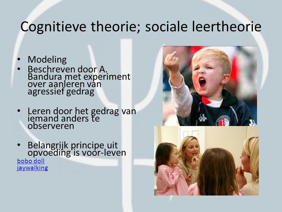 Cognitieve theorie; sociale leertheorie