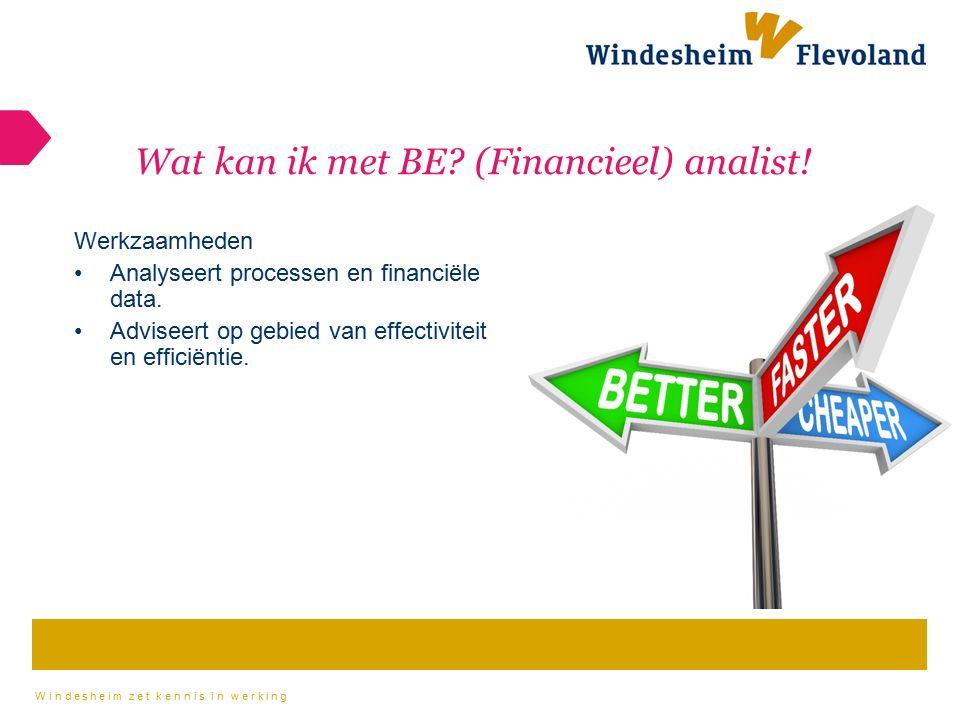 Wat kan ik met BE (Financieel) analist!