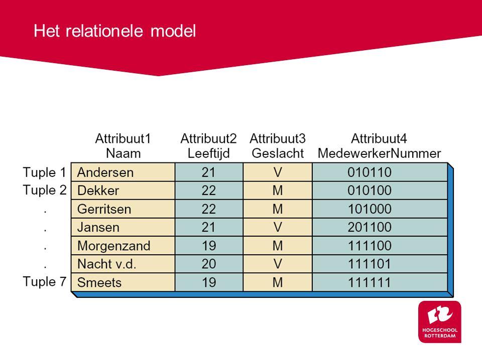 Het relationele model