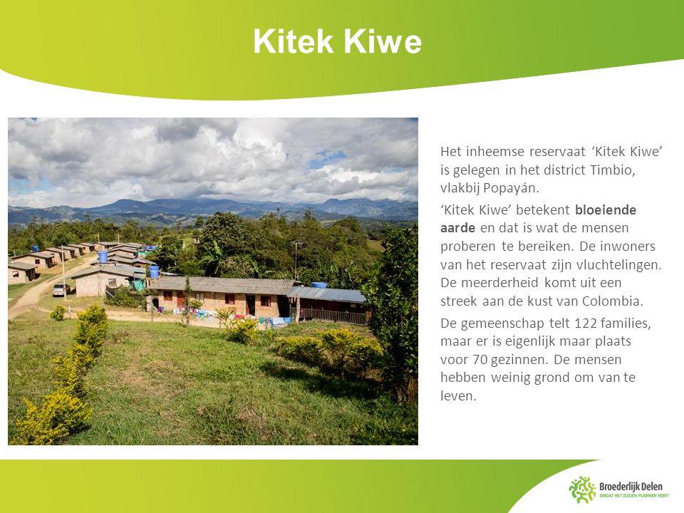 Kitek Kiwe