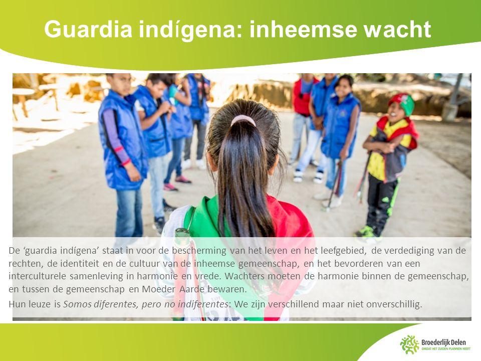 Guardia indígena: inheemse wacht