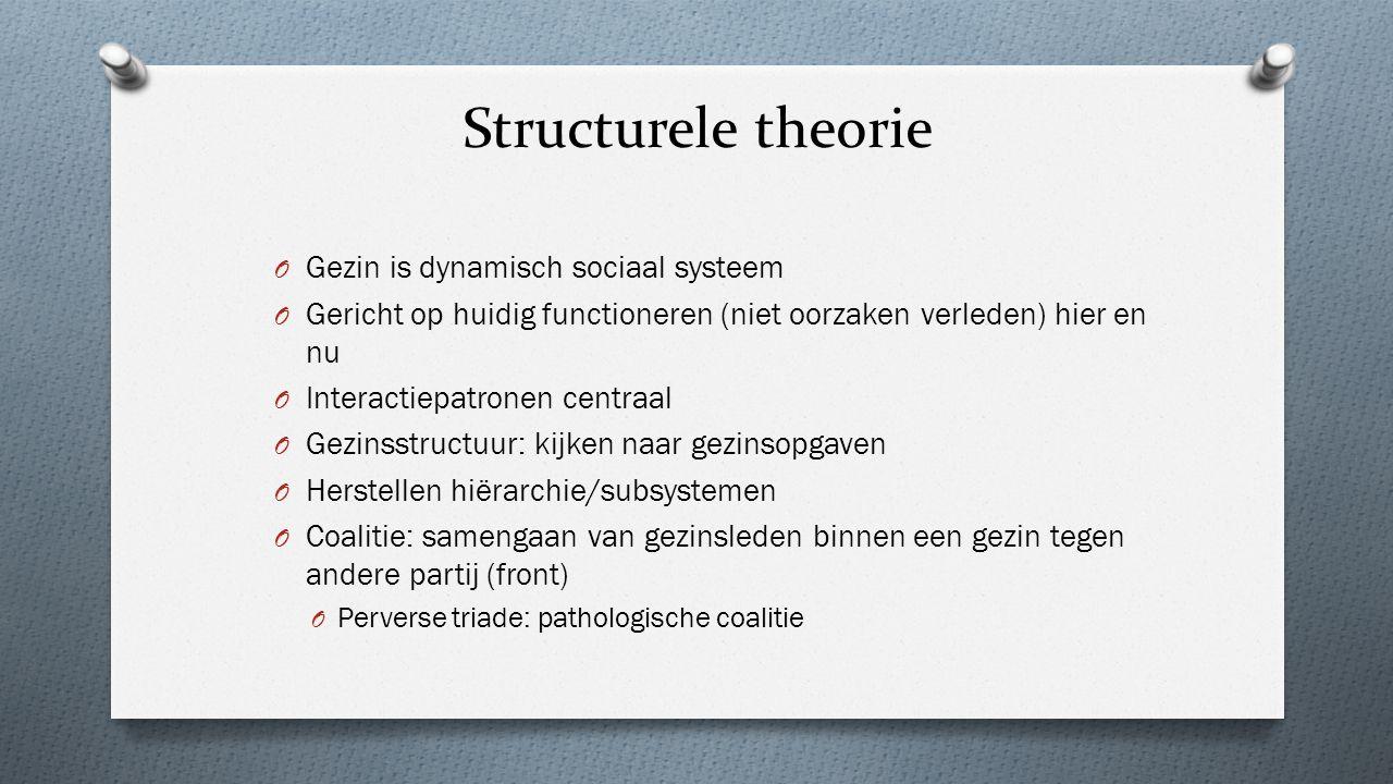 Structurele theorie Gezin is dynamisch sociaal systeem