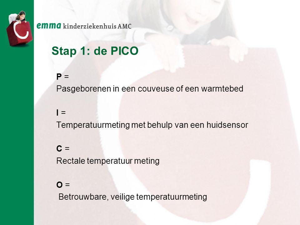 Stap 1: de PICO