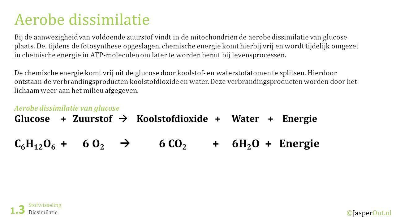 Aerobe dissimilatie C6H12O6 + 6 O2  6 CO2 + 6H2O + Energie