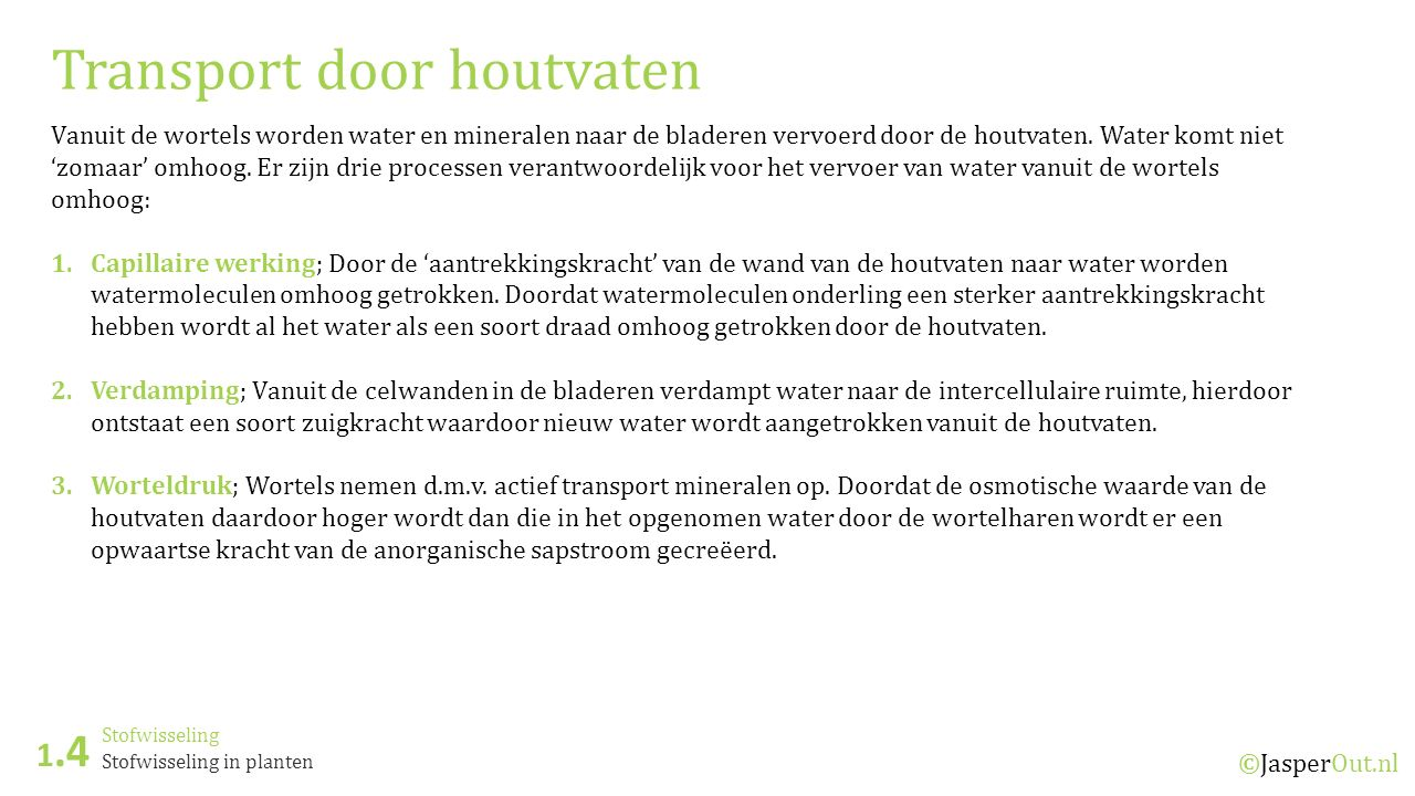 Transport door houtvaten