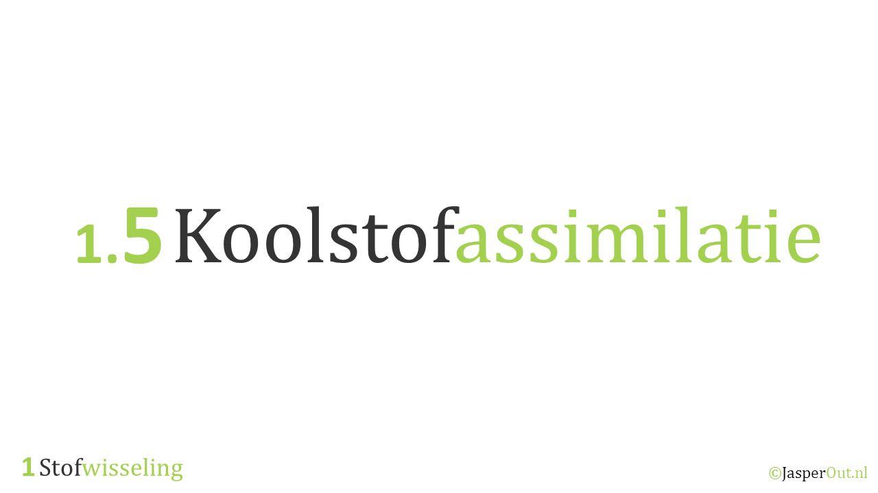 1.5 Koolstofassimilatie 1 Stofwisseling ©JasperOut.nl