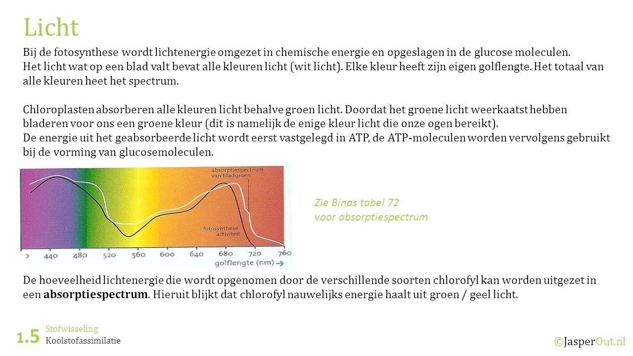 Licht Bij de fotosynthese wordt lichtenergie omgezet in chemische energie en opgeslagen in de glucose moleculen.