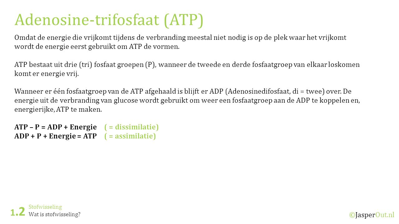 Adenosine-trifosfaat (ATP)