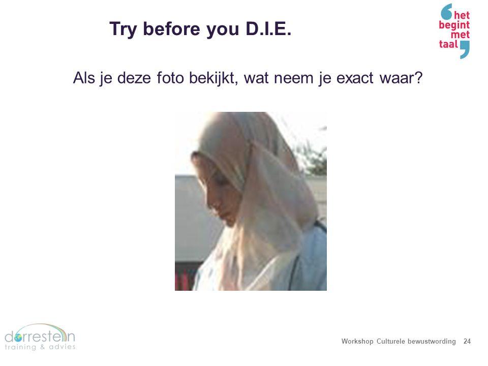 Try before you D.I.E. Descriptie – Wat ik waarneem: zie, voel, proef, hoor enz…(alleen observaties, feiten)