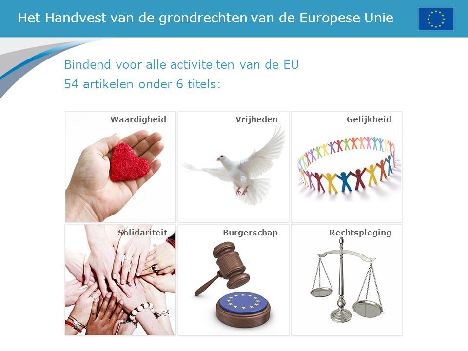 Het Handvest van de grondrechten van de Europese Unie