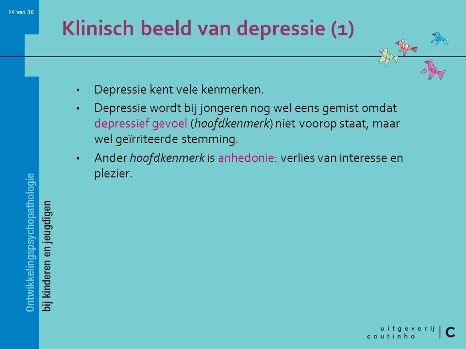 Klinisch beeld van depressie (1)