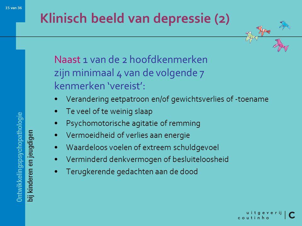 Klinisch beeld van depressie (2)