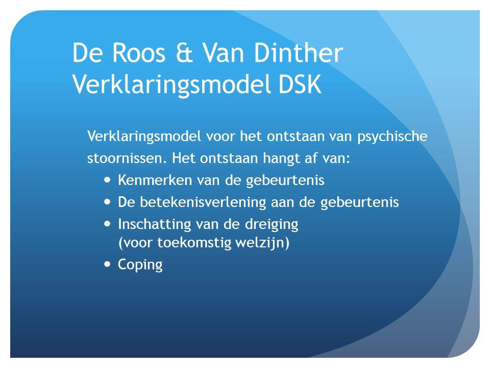 De Roos & Van Dinther Verklaringsmodel DSK