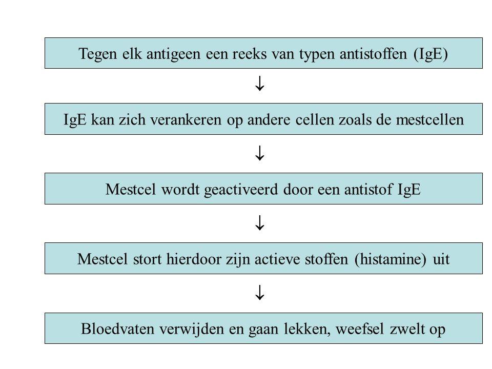 Tegen elk antigeen een reeks van typen antistoffen (IgE)