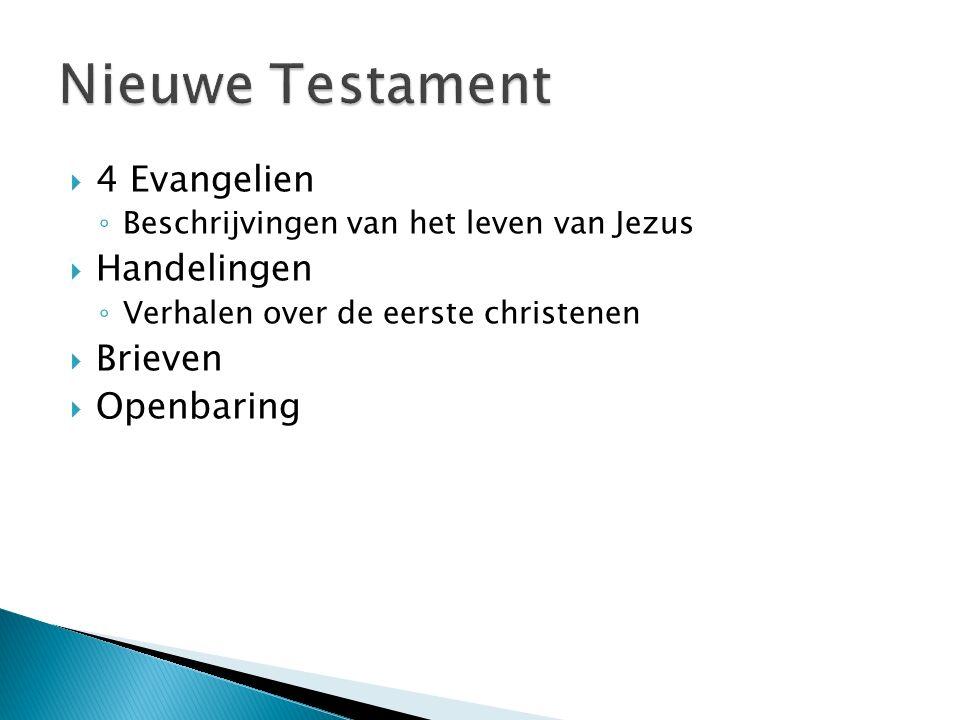Nieuwe Testament 4 Evangelien Handelingen Brieven Openbaring