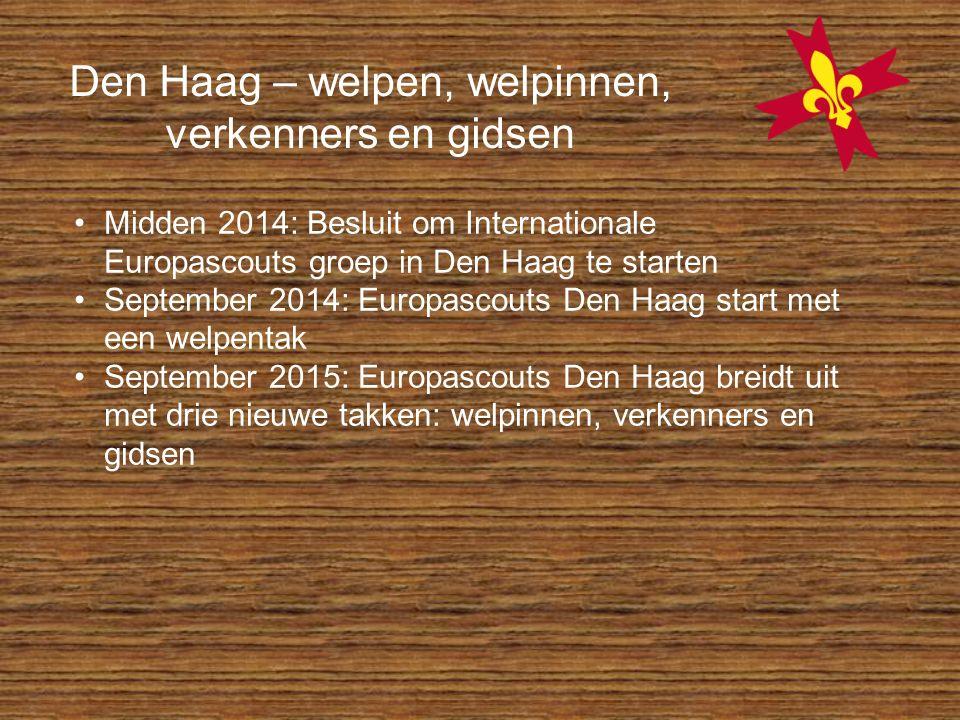 Den Haag – welpen, welpinnen, verkenners en gidsen