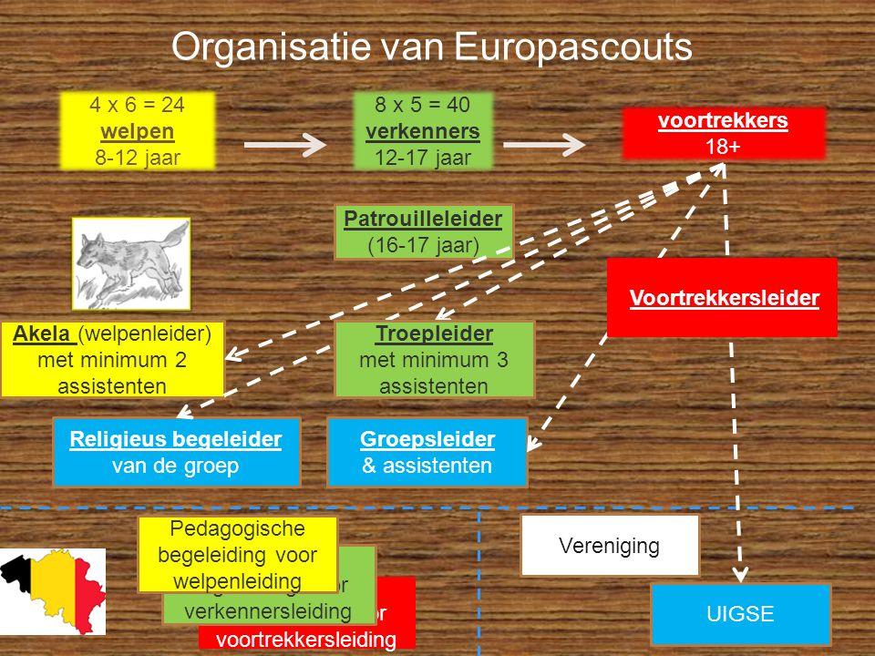Organisatie van Europascouts