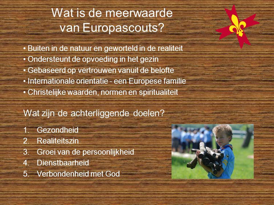 Wat is de meerwaarde van Europascouts