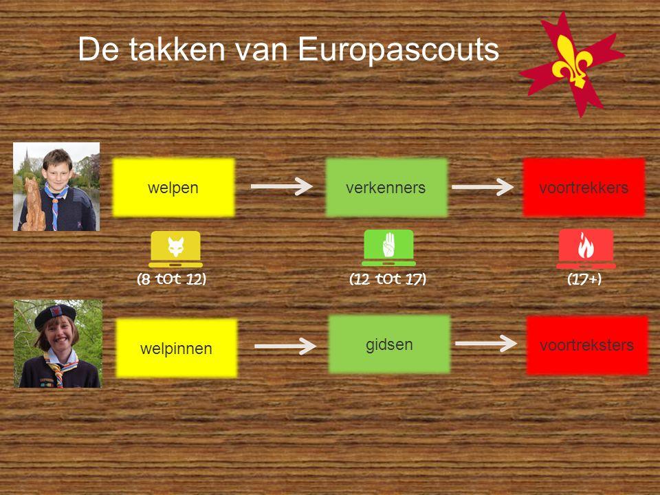 De takken van Europascouts