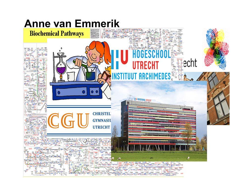 Anne van Emmerik