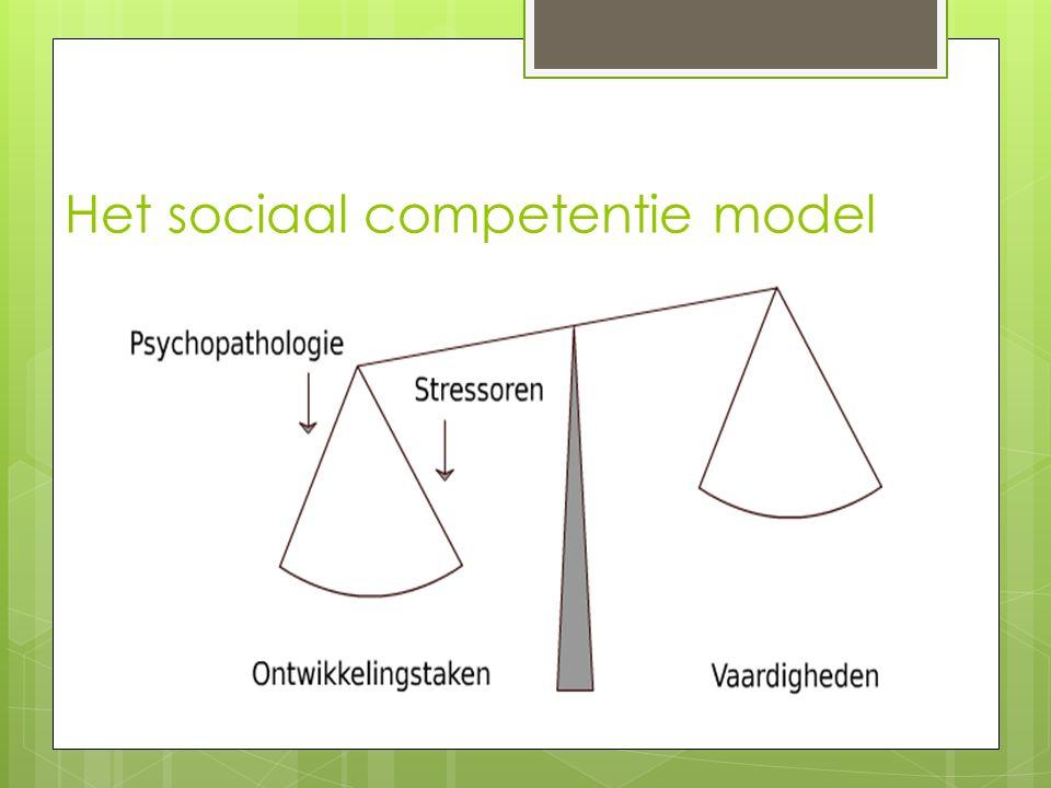 Het sociaal competentie model