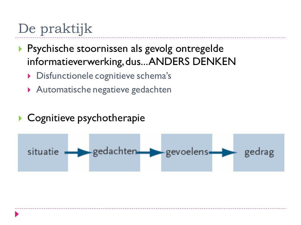 De praktijk Psychische stoornissen als gevolg ontregelde informatieverwerking, dus... ANDERS DENKEN.