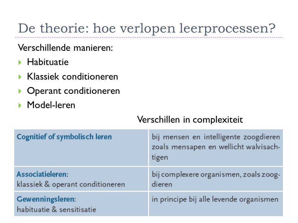 De theorie: hoe verlopen leerprocessen