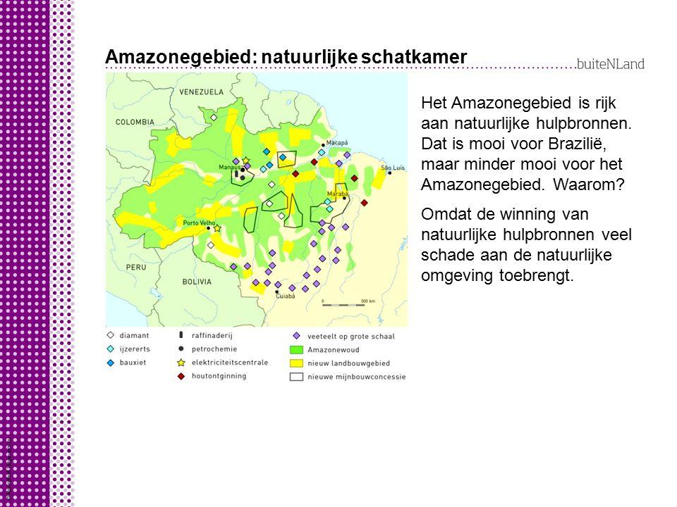 Amazonegebied: natuurlijke schatkamer