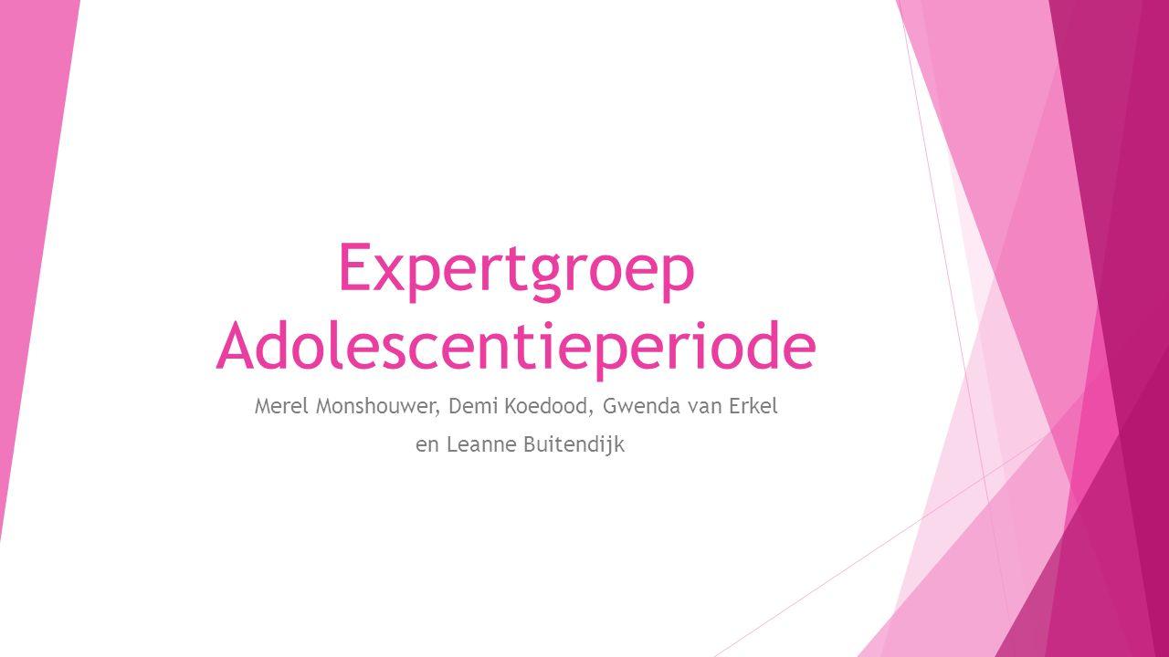 Expertgroep Adolescentieperiode