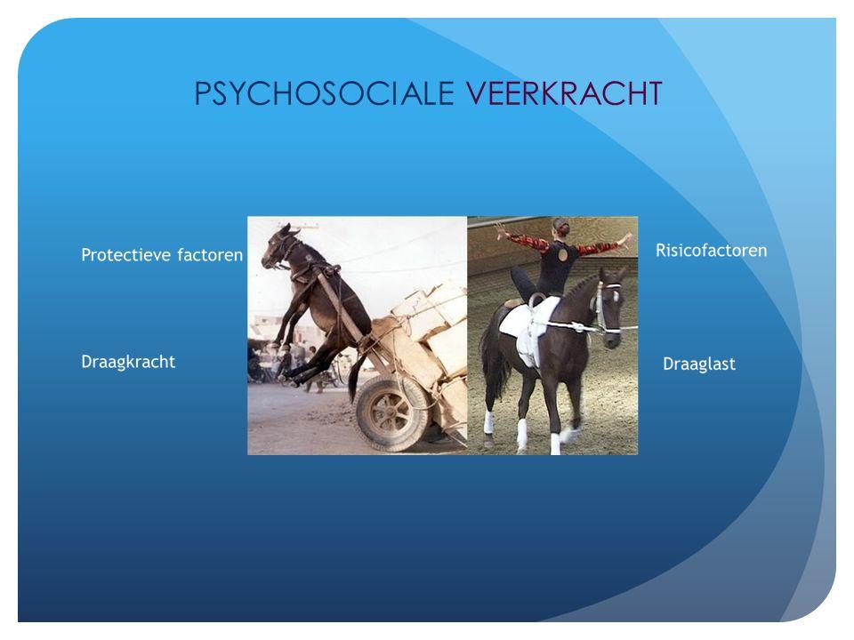Psychosociale veerkracht