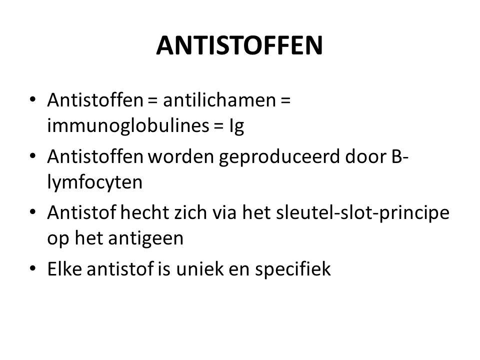 ANTISTOFFEN Antistoffen = antilichamen = immunoglobulines = Ig