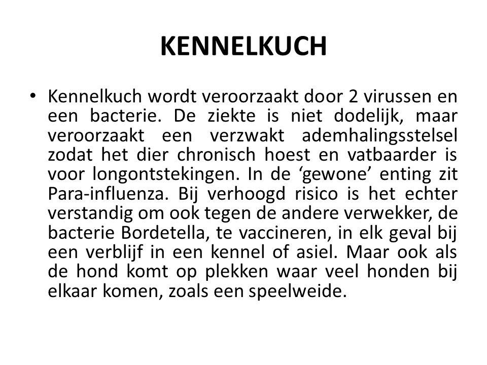 KENNELKUCH