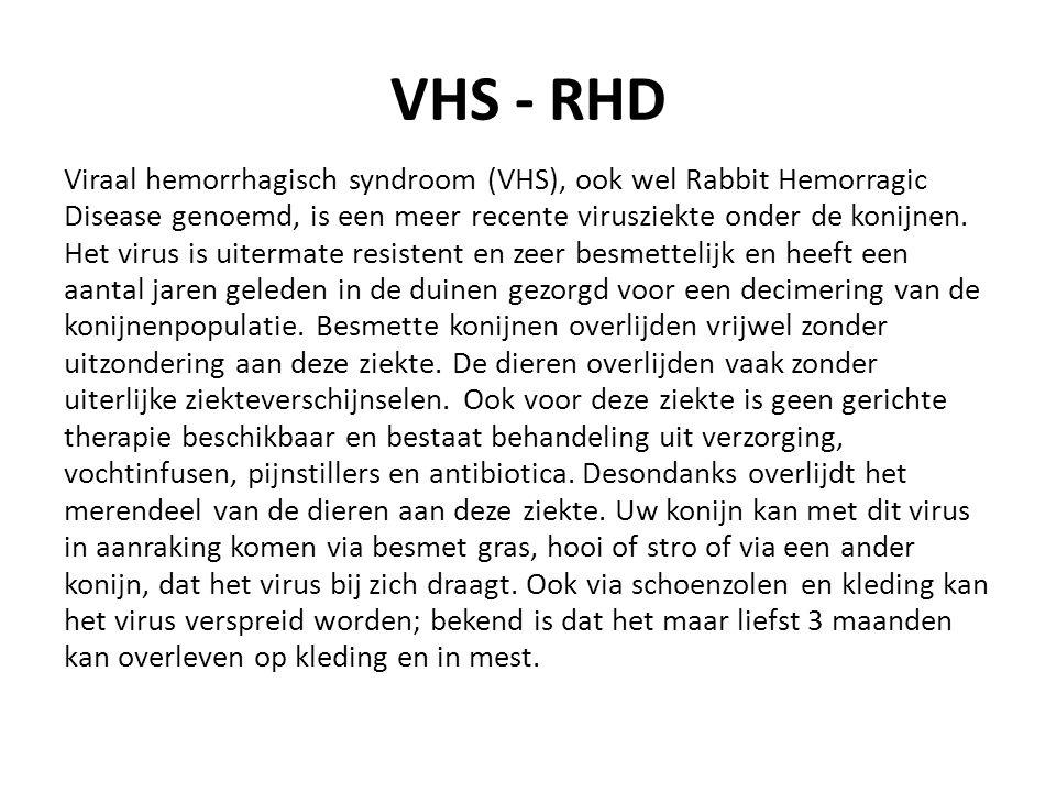 VHS - RHD