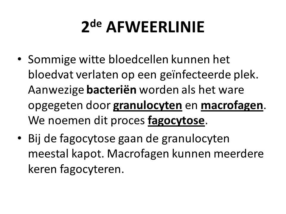 2de AFWEERLINIE