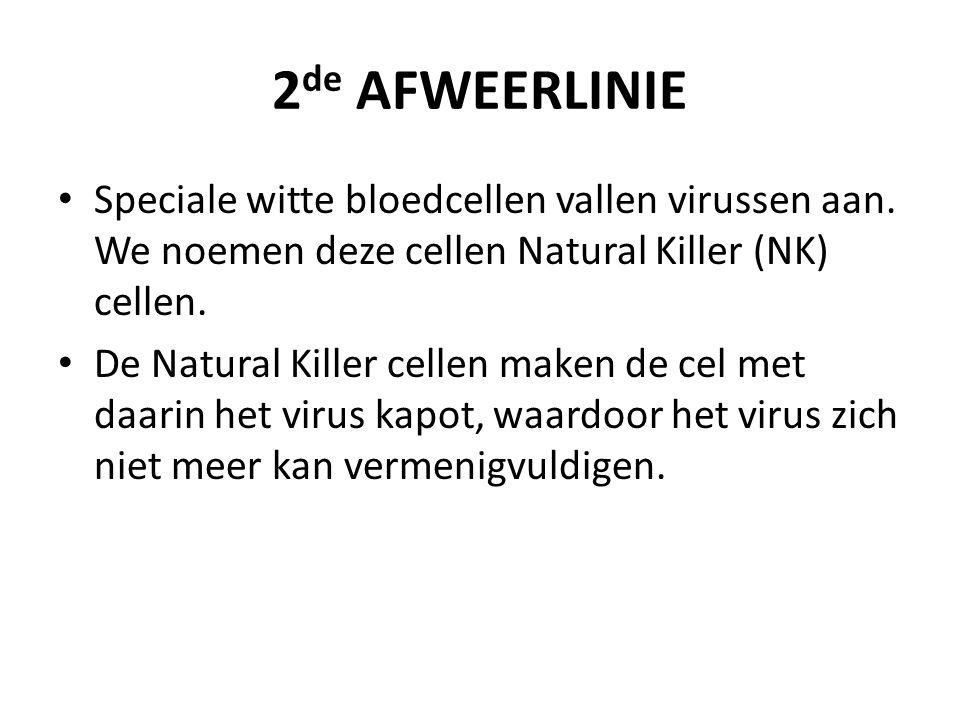 2de AFWEERLINIE Speciale witte bloedcellen vallen virussen aan. We noemen deze cellen Natural Killer (NK) cellen.