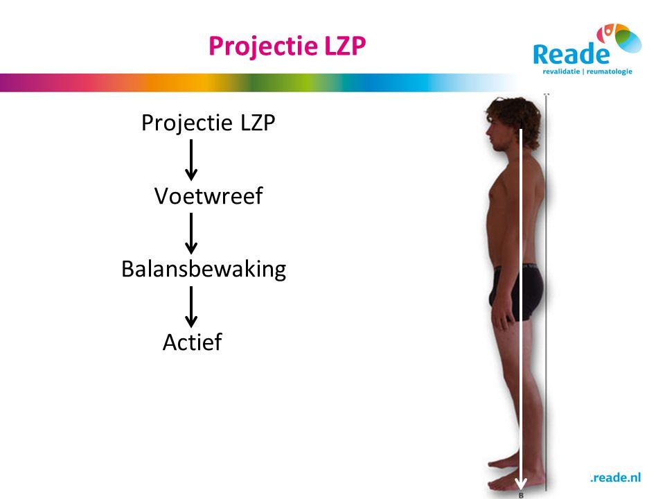 Projectie LZP Projectie LZP Voetwreef Balansbewaking Actief