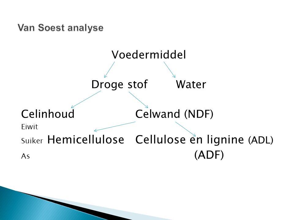 Celinhoud Celwand (NDF)