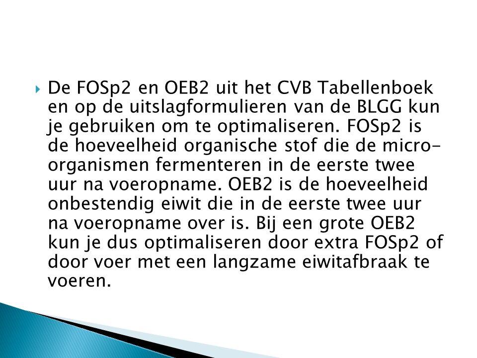 De FOSp2 en OEB2 uit het CVB Tabellenboek en op de uitslagformulieren van de BLGG kun je gebruiken om te optimaliseren.