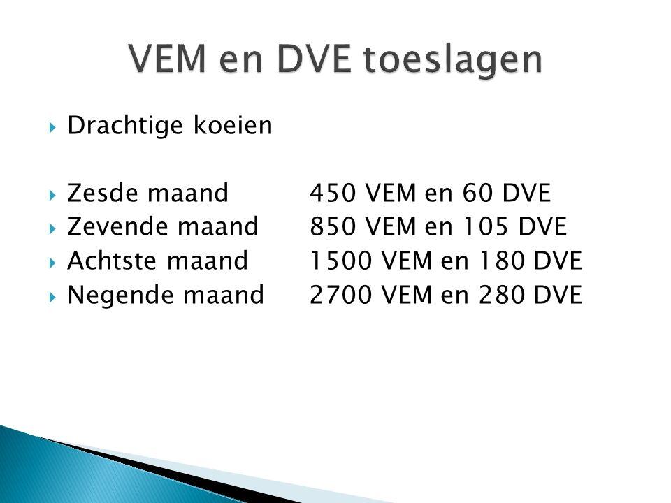 VEM en DVE toeslagen Drachtige koeien Zesde maand 450 VEM en 60 DVE
