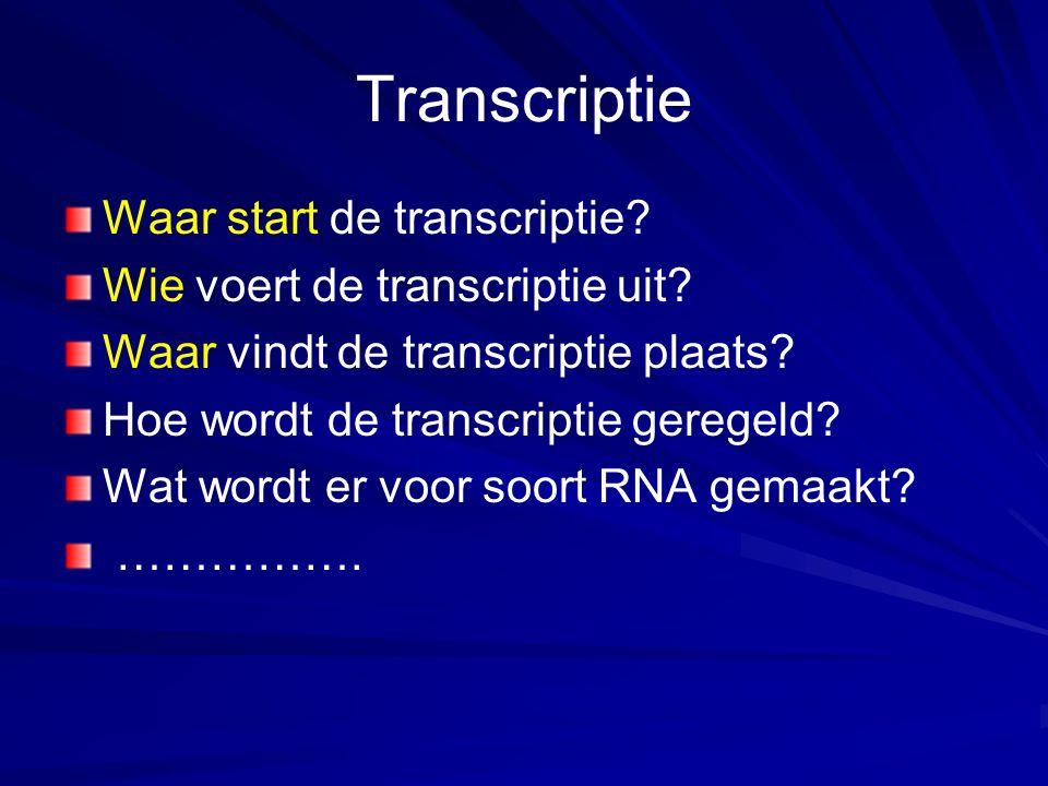 Transcriptie Waar start de transcriptie