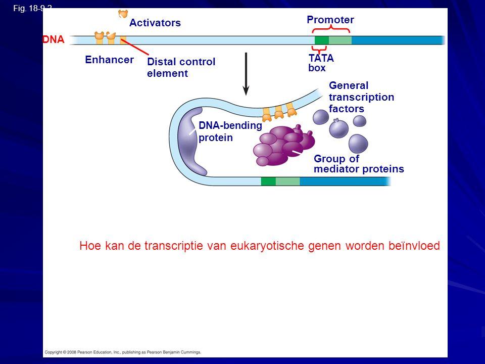 Hoe kan de transcriptie van eukaryotische genen worden beïnvloed