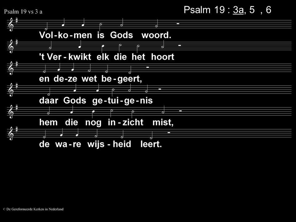 Psalm 19 : 3a, 5a, 6a