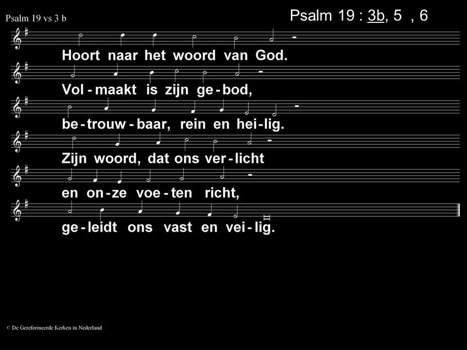 Psalm 19 : 3b, 5a, 6a