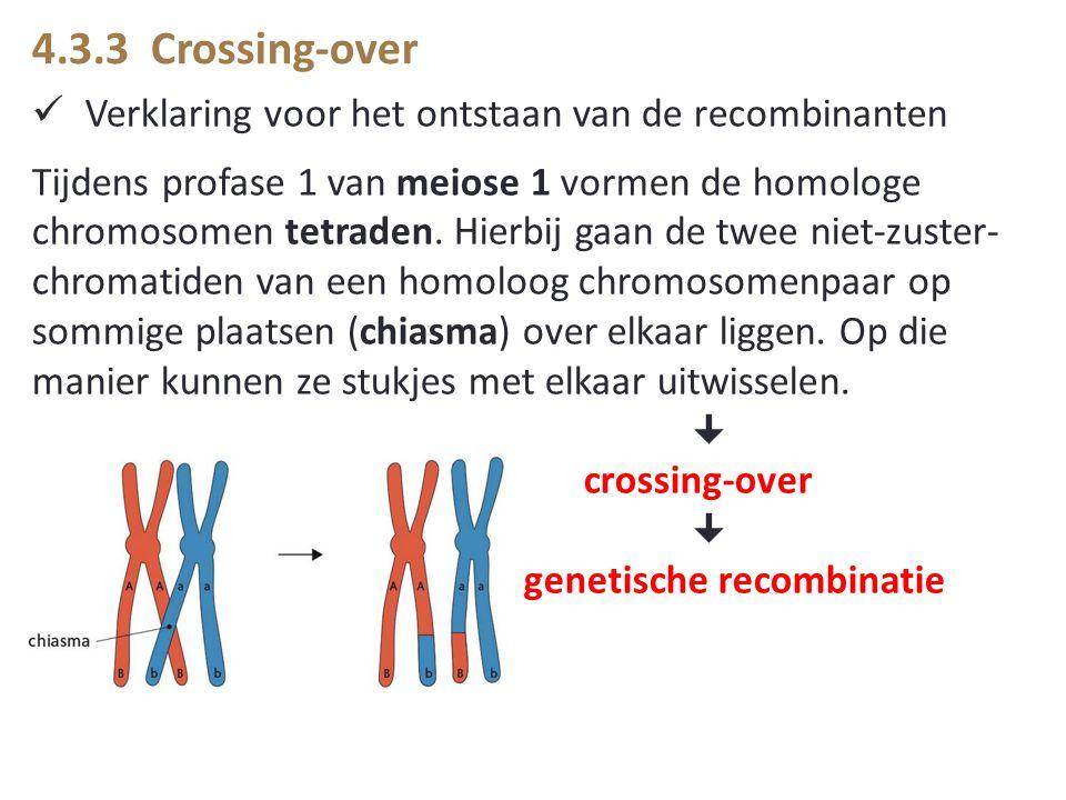 4.3.3 Crossing-over Verklaring voor het ontstaan van de recombinanten