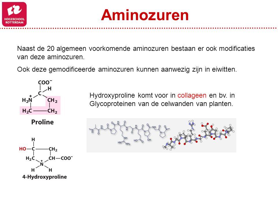 Aminozuren Naast de 20 algemeen voorkomende aminozuren bestaan er ook modificaties van deze aminozuren.