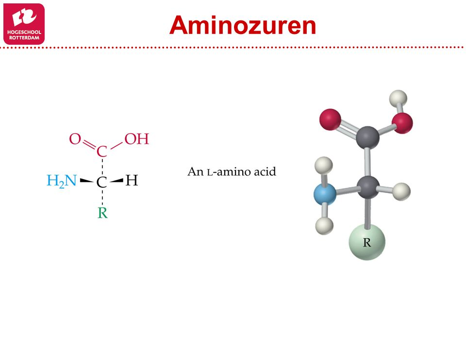 Aminozuren Figure: 24-04-01UN Title: Chiral Amino Acids Caption:
