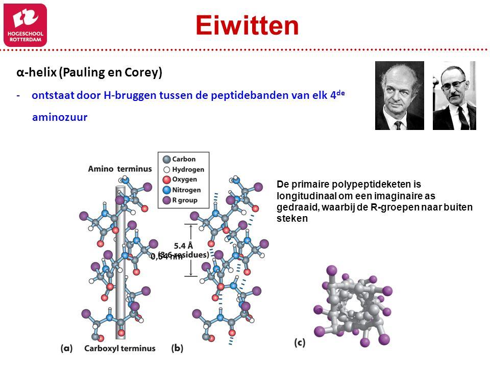 Eiwitten α-helix (Pauling en Corey)