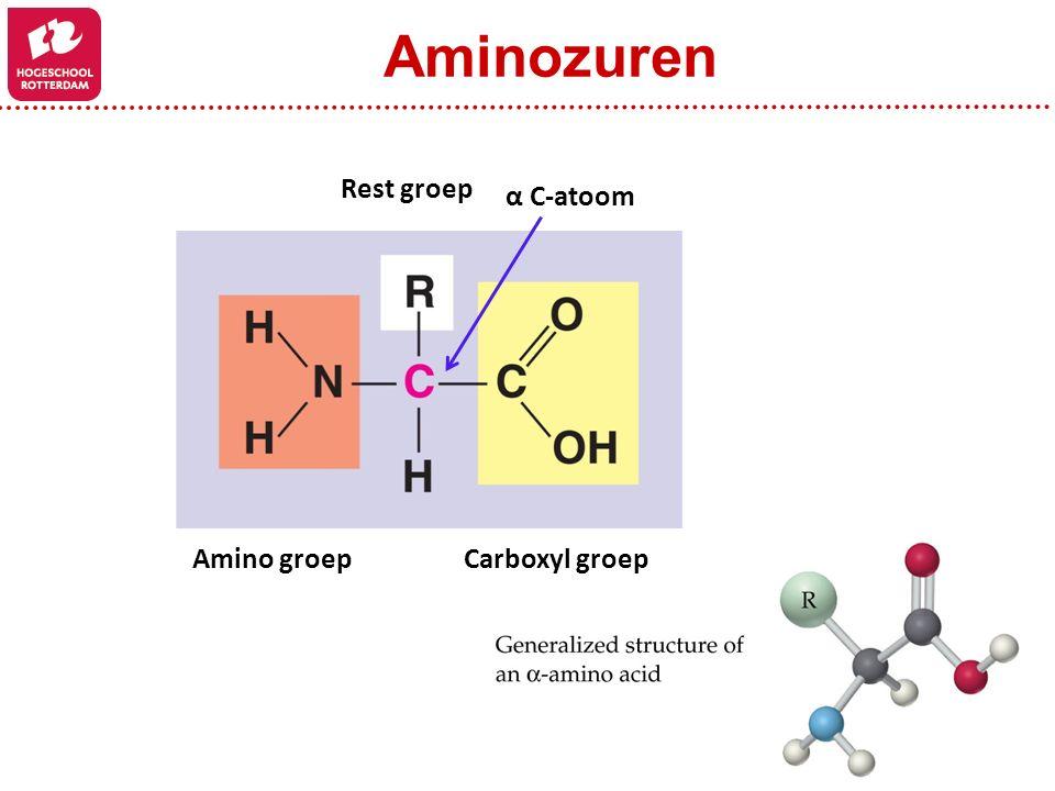 Aminozuren Rest groep α C-atoom Amino groep Carboxyl groep
