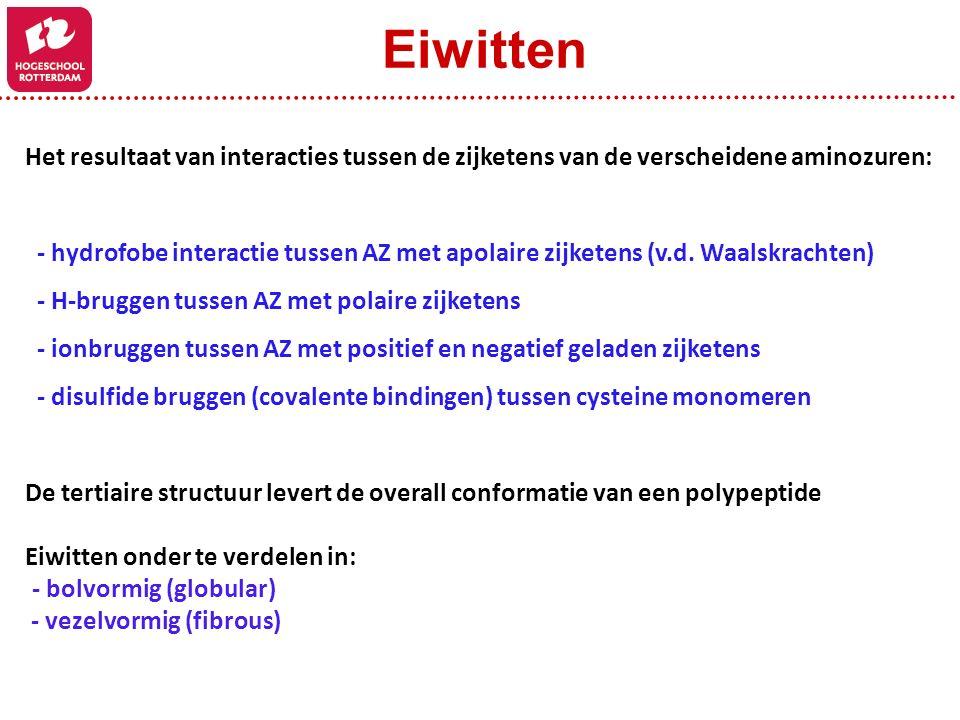 Eiwitten Het resultaat van interacties tussen de zijketens van de verscheidene aminozuren: